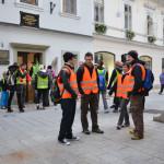 Vrba_2012-sl02_FOTOIrena_Majdic